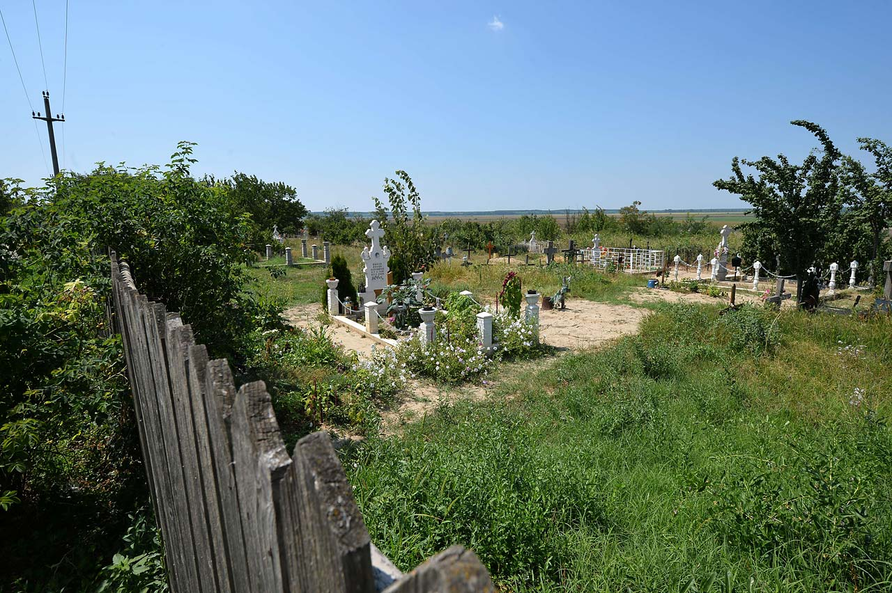 The small graveyard near Olga's house where she buried the paintings a second time.